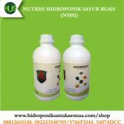 nutrisi hidroponik sayuran buah