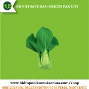 benih green pakcoy