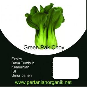 benih sayuran daun pakcoy