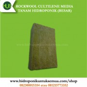 rockwool media tanam