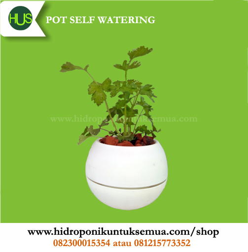 pot self watering