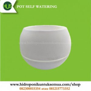 pot self watering