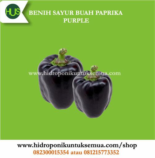 paprika ungu