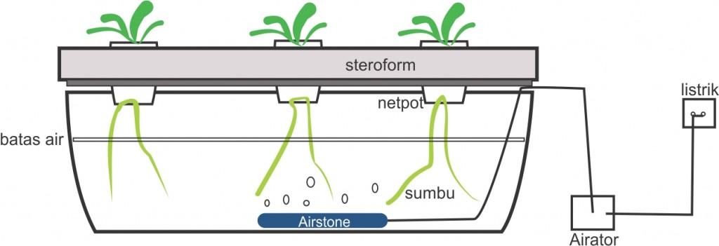 wick sistem hidroponik