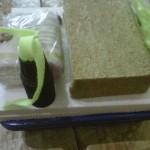 cara membuat starterkit hidroponik wick sistem