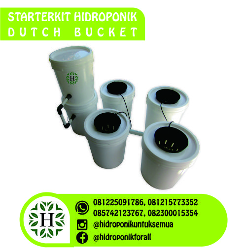 jual starterkit dutch bucket