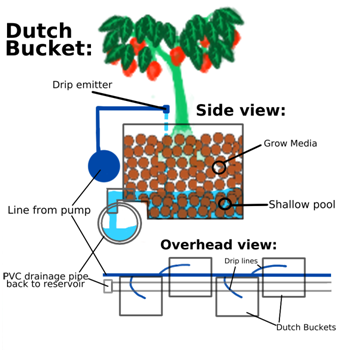 sistem dutchbucket