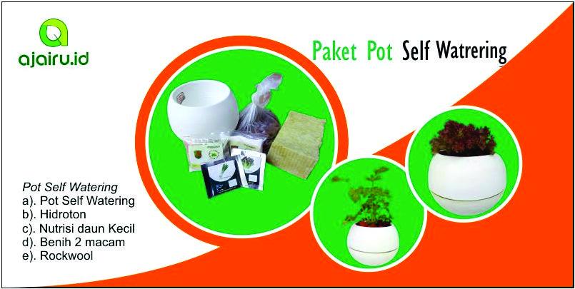 paket pot self watering