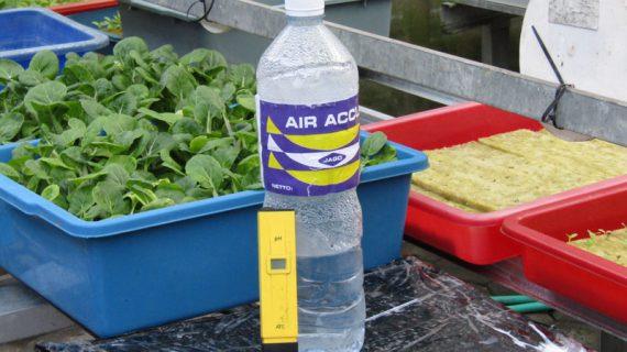 Cara Menaikkan dan Menurunkan pH Larutan Nutrisi Hidroponik
