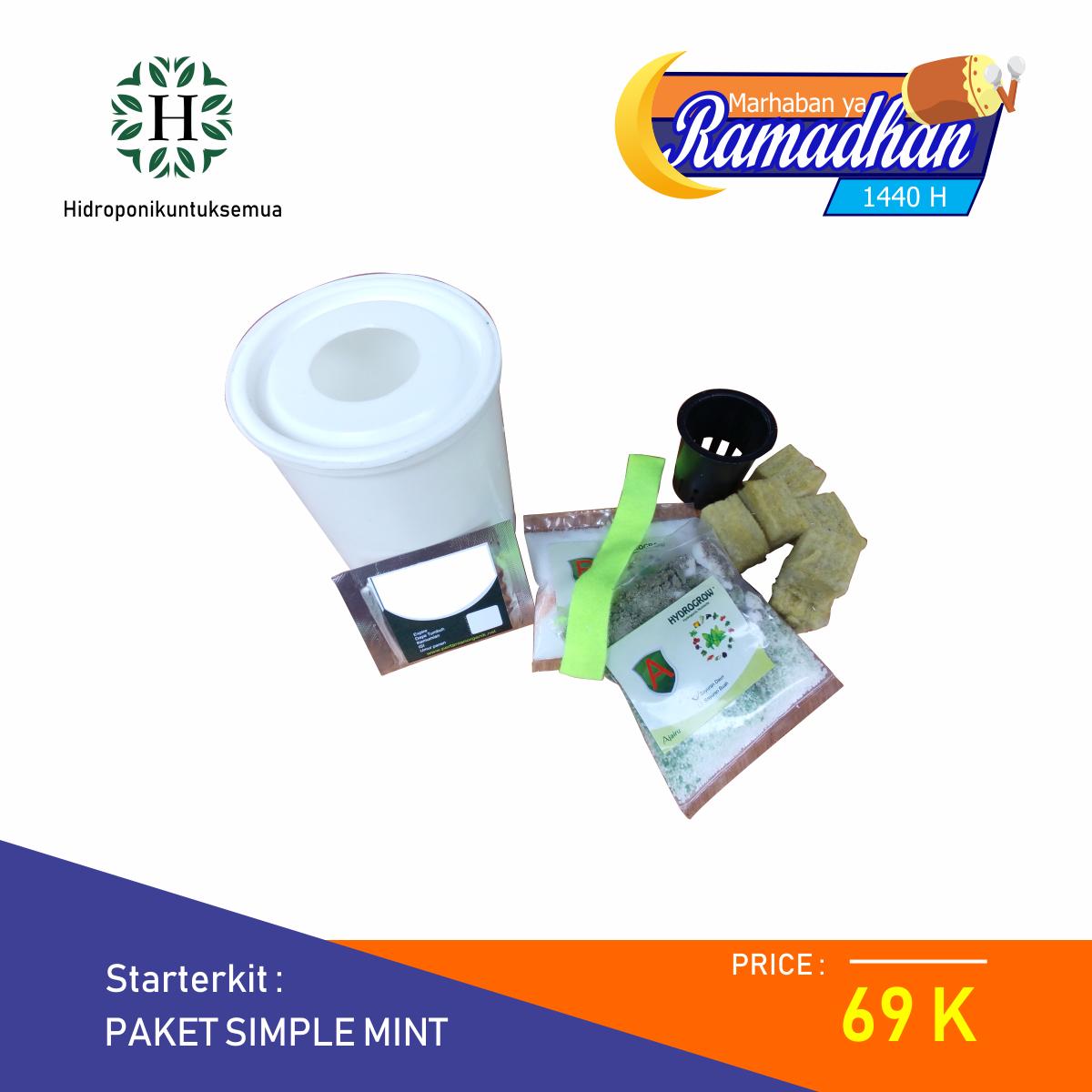 Paket Simple Mint